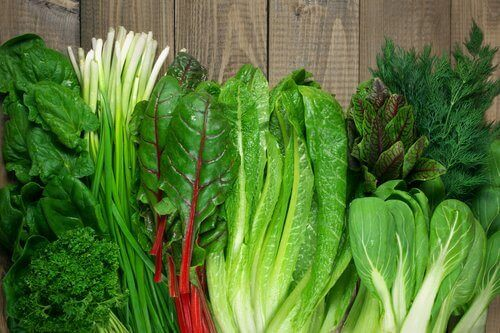 푸른잎 채소는 매일 먹는 식단에 반드시 넣어야 할 식품이다.