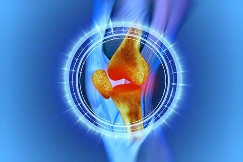 반달연골 수술 후 무릎 재활 과정