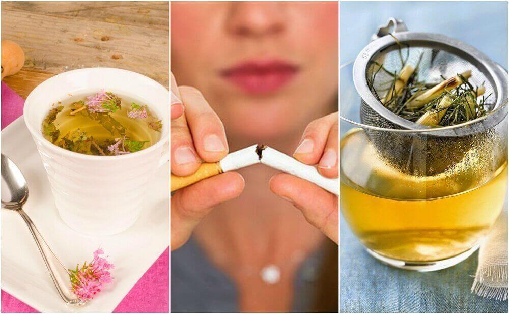 흡연 욕구를 조절하는 식물성 차 5가지