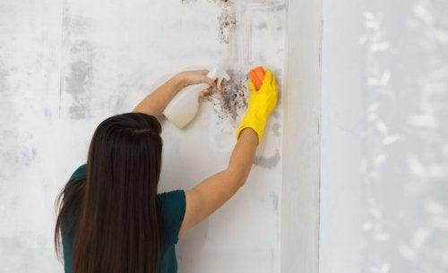 욕실 곰팡이 없애는 4가지 방법
