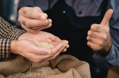 식단에 추가해야 할 통곡물