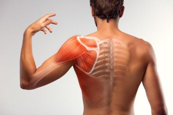 근육 경련을 감소시키는 7가지 자가요법