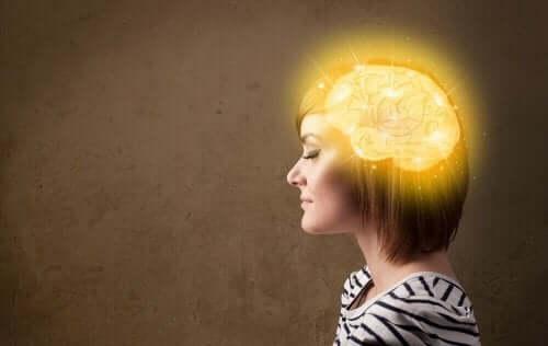 활력적이고 젊은 뇌를 위한 최고의 비결