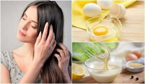 건성모발을 위한 7가지 트리트먼트 - 달걀, 우유 그리고 장미