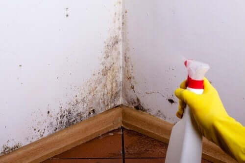 벽의 얼룩을 청소하는 팁 4가지