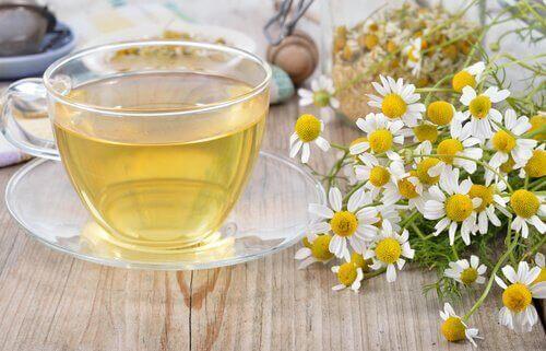 접촉피부염 치료에 도움되는 6가지 자연 요법