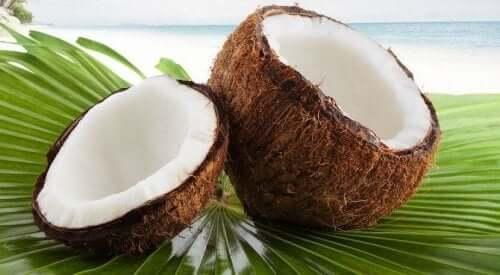 빠르고 간단한 코코넛 아몬드 쿠키 레시피
