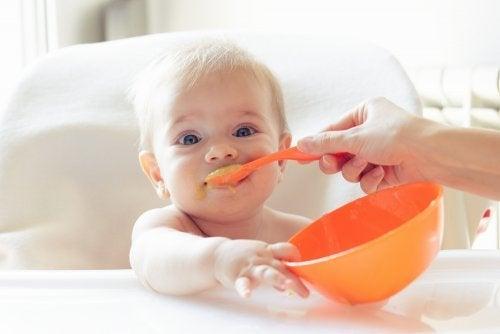 아기 건강식을 만드는 방법 10가지