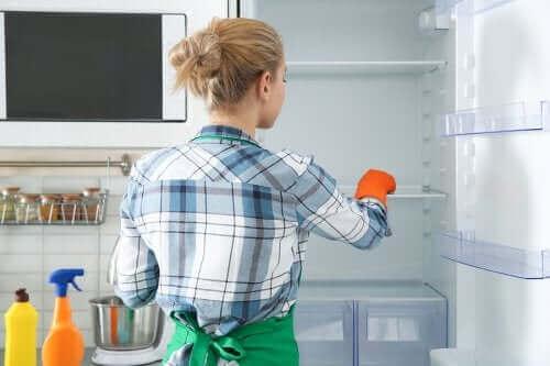 친환경적인 냉장고 살균 청소법
