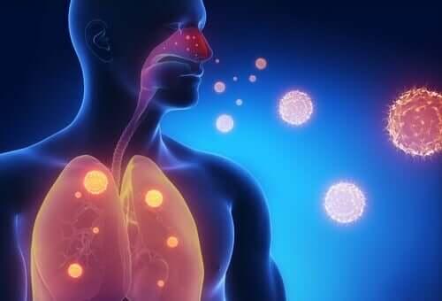 독감 증상 완화에 도움이 되는 3가지 차