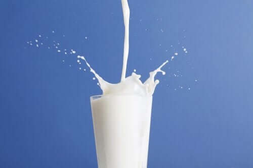 전유와 저지방 우유, 어느 쪽이 더 나을까?