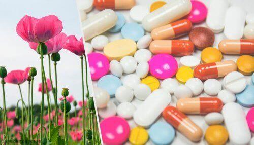 오피오이드 약물의 용도