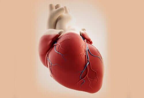 동맥간이 생기는 일반적인 원인