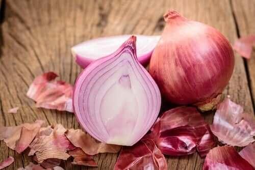신장 기능 향상에 도움 되는 식품
