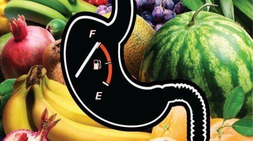 식사 속도가 체중에 영향을 미칠까?