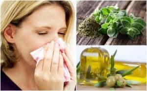 호흡기를 보호하는 오레가노 올리브 오일 치료제