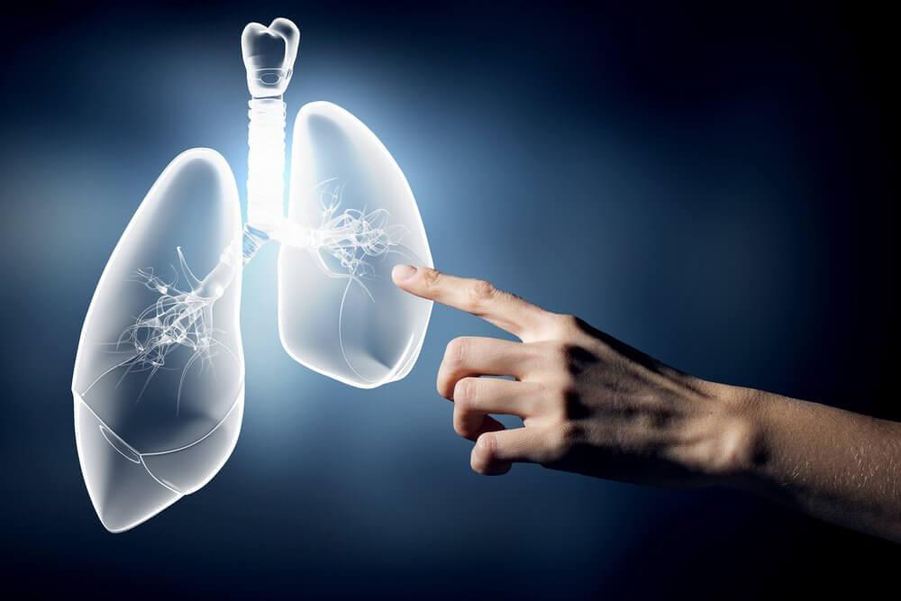 금연해야 하는 이유