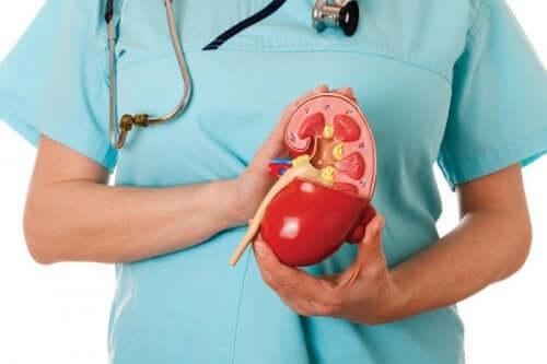 고염소성 신세뇨관 산증의 치료