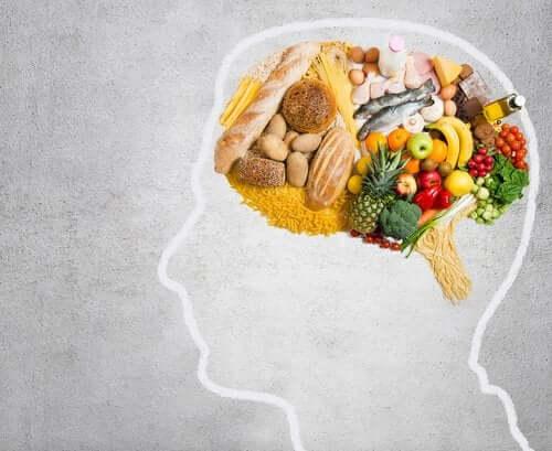 뇌 건강에는 어떤 지방이 좋을까?