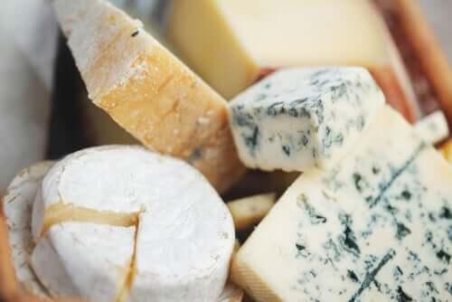 치즈 자르는 법