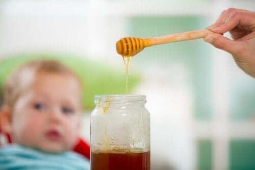 아기에게 꿀을 먹이면 위험한 이유