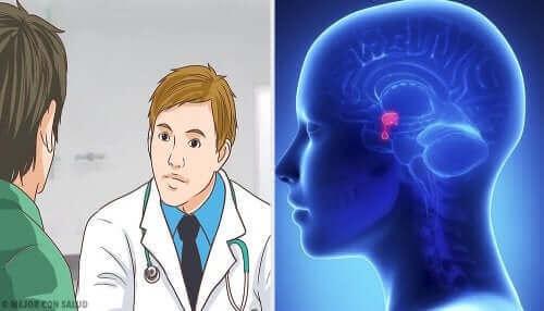 뇌하수체 선종은 어떤 병일까?