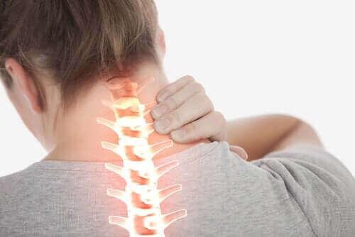근육성 사경의 증상 및 치료