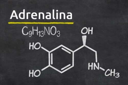 에피네프린은 어떻게 투여될까?