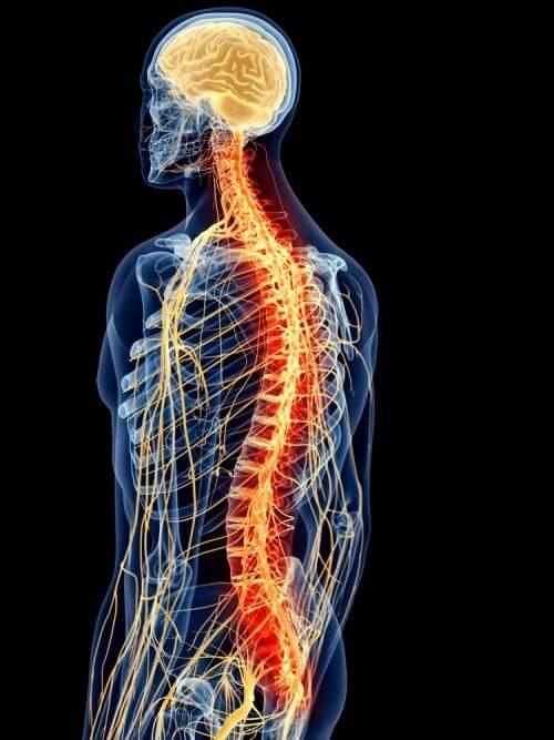 강직성 척추염