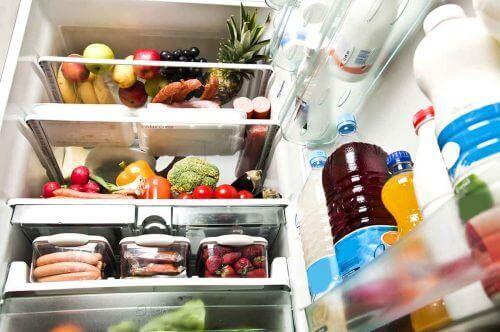 냉장과 냉동