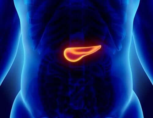 급성 췌장염의 증상