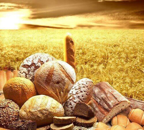 곡물은 왜 몸에 좋을까?