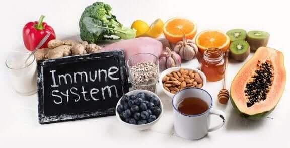 약해진 면역 체계를 나타내는 증상 및 개선 방법