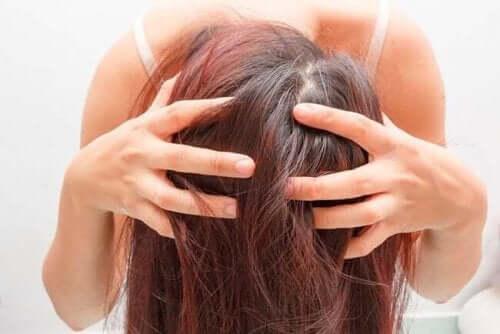 건강한 모발을 위한 로즈메리: 3가지 요법