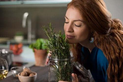 건강한 모발을 위한 로즈메리 요법 3가지