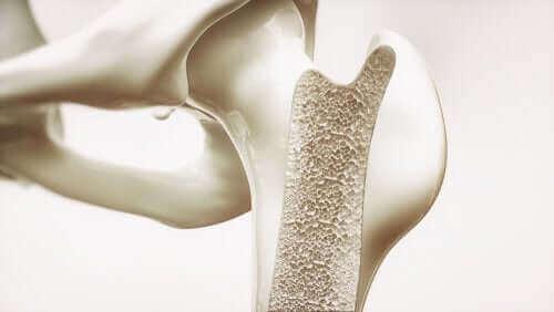 오트밀은 신경계와 뼈 건강에 좋다.