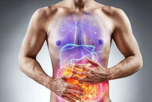 유전성 과당불내성 및 과당 흡수불량을 위한 식단