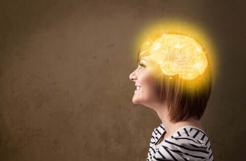 저탄수화물 식단과 뇌