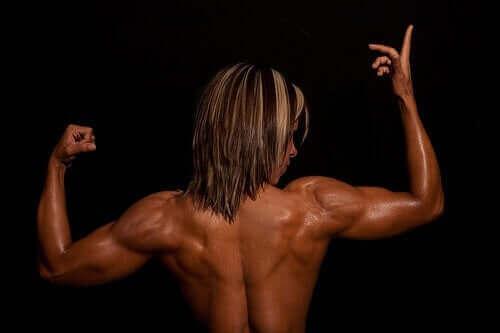 등 근육의 해부학: 표면적 근육