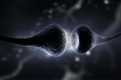 설트랄린은 신체에 어떤 영향을 미칠까?