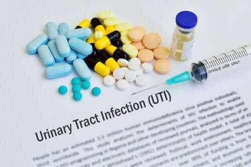 요로 감염 치료를 위한 항생제