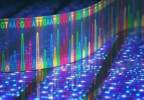 유전자 돌연변이는 어디에서 발생할 수 있을까?