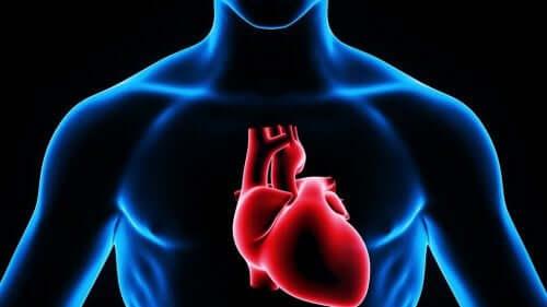 심장천자는 약을 투여하는 방법