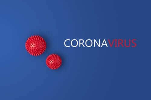 변종 코로나바이러스: L 타입과 S 타입