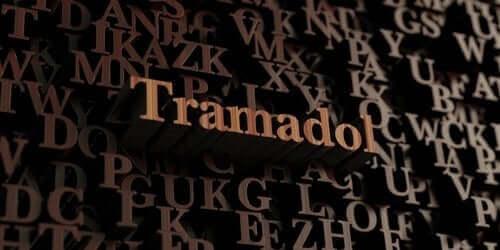 트라마돌의 유형 및 용도