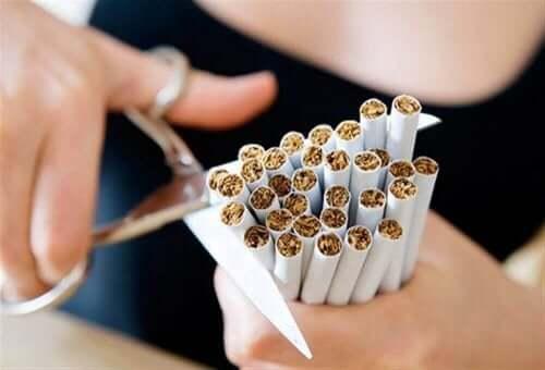 금연 준비 단계