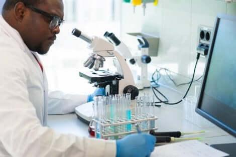 코로나바이러스 검출: PCR 검사란 무엇일까?