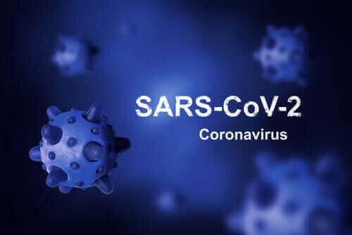 코로나바이러스를 퇴치할 수 없었던 이유