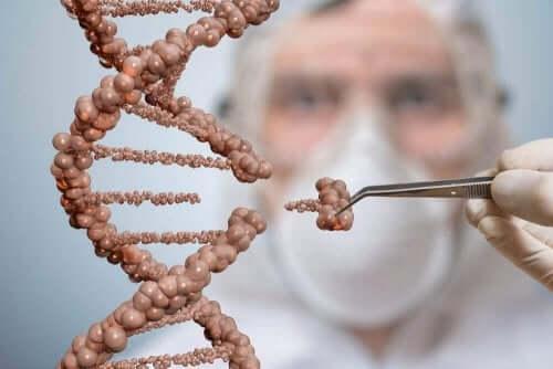 줄기세포 치료는 무엇일까?