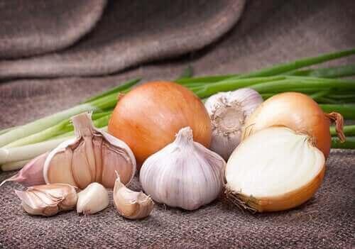음식의 색 - 흰 채소는 어떨까?